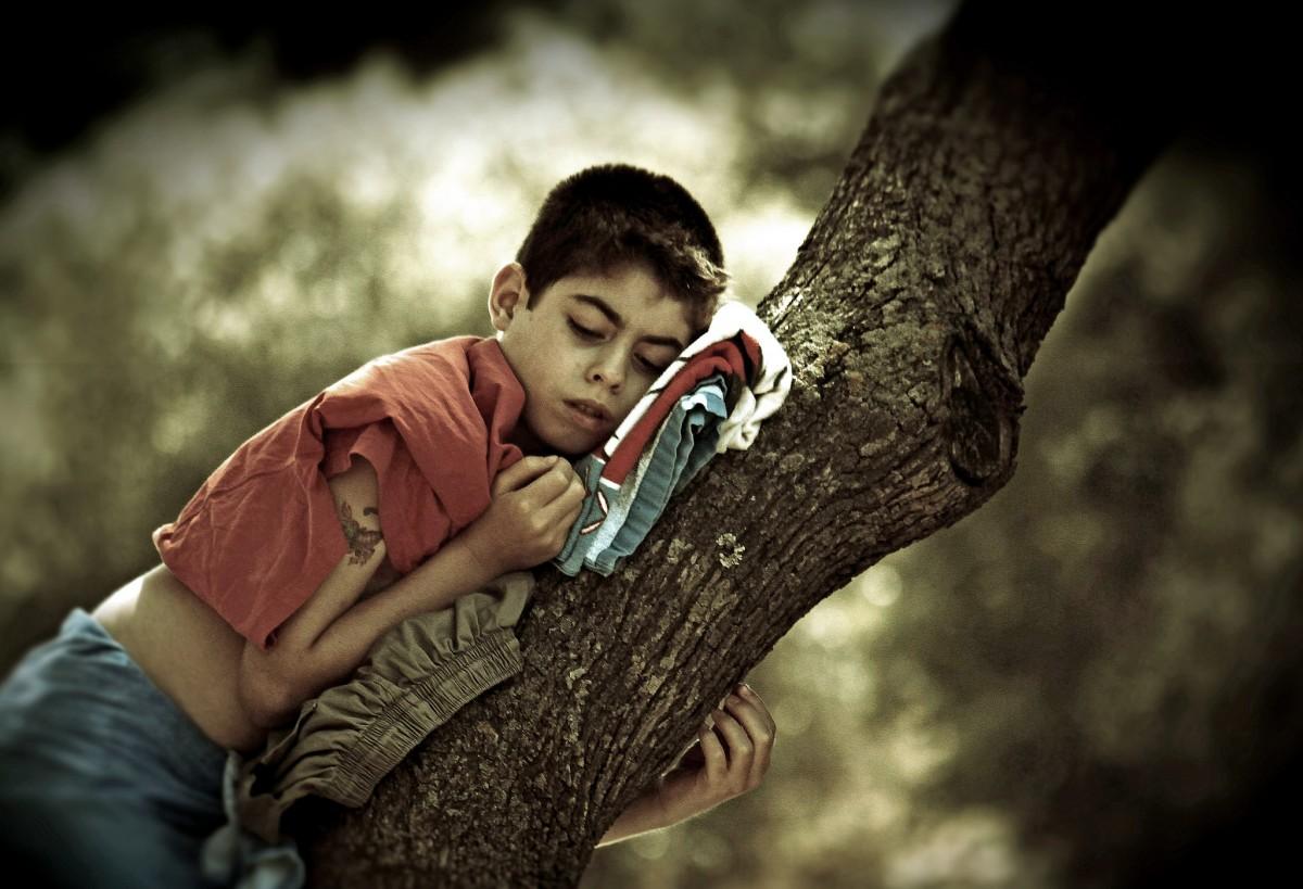 Ağaçta uyuyan bir insan çocuğu... Kredi: Mark D. Baynham