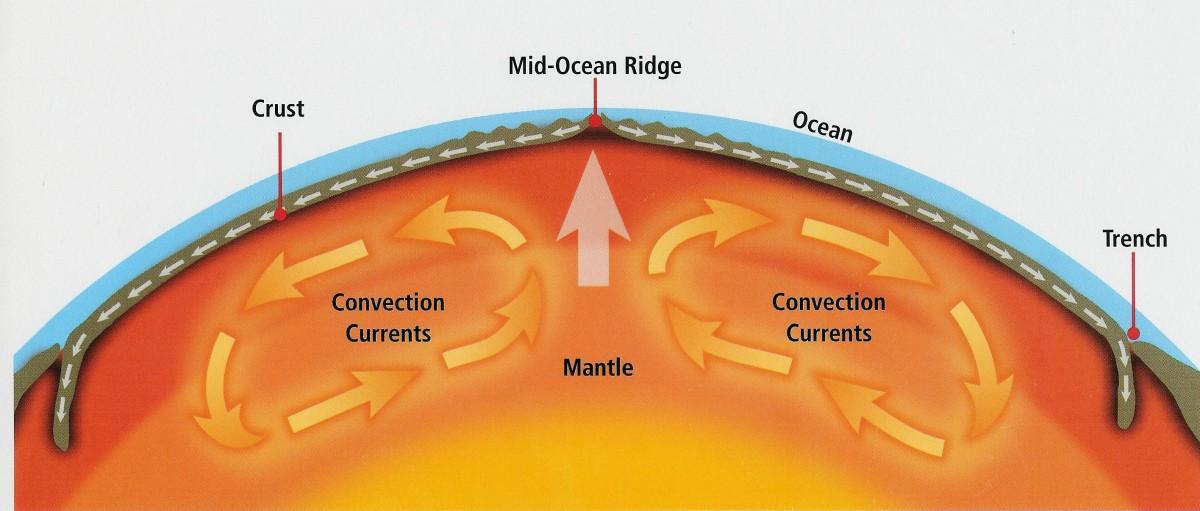 """Görselde görebileceğiniz gibi üzerinde bulunduğumuz kabuk inceciktir. Hemen altında meydana gelen konveksiyon akıntıları, kabukta bulunan ve """"plaka"""" denen dev kara parçalarını sürekli hareket ettirir. Bu hareket, kahverengi olarak çizilen manto üzerindeki oklarla gösterilmiştir. Akıntıların yönüne bağlı olarak karalar da hareket ederler. Bu nedenle milyonlarca yıl içerisinde yer yüzünün kara dağılımları sürekli değişir. Yeni kıtalar var olur, var olan kıtalar yok olur, kıtalar birleşerek veya ayrılarak biçim değiştirirler."""