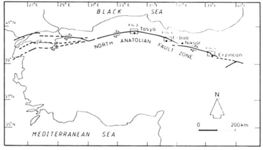 Daha geniş bir fay hattı segmanları haritası...