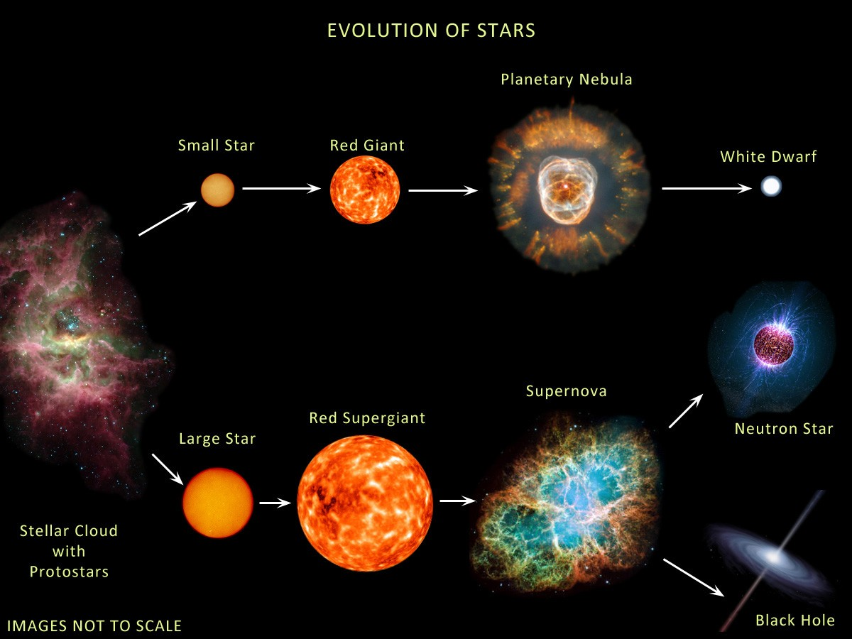Yıldızların evrimini gösteren bir görsel...